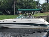 24 Foot Chaparral Sunesta 233