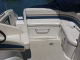 24 Foot Chaparral 233 rear seating